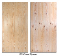 BC class plywood600
